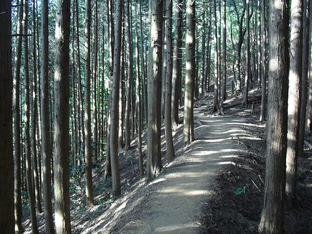 県 心霊 スポット 熊本