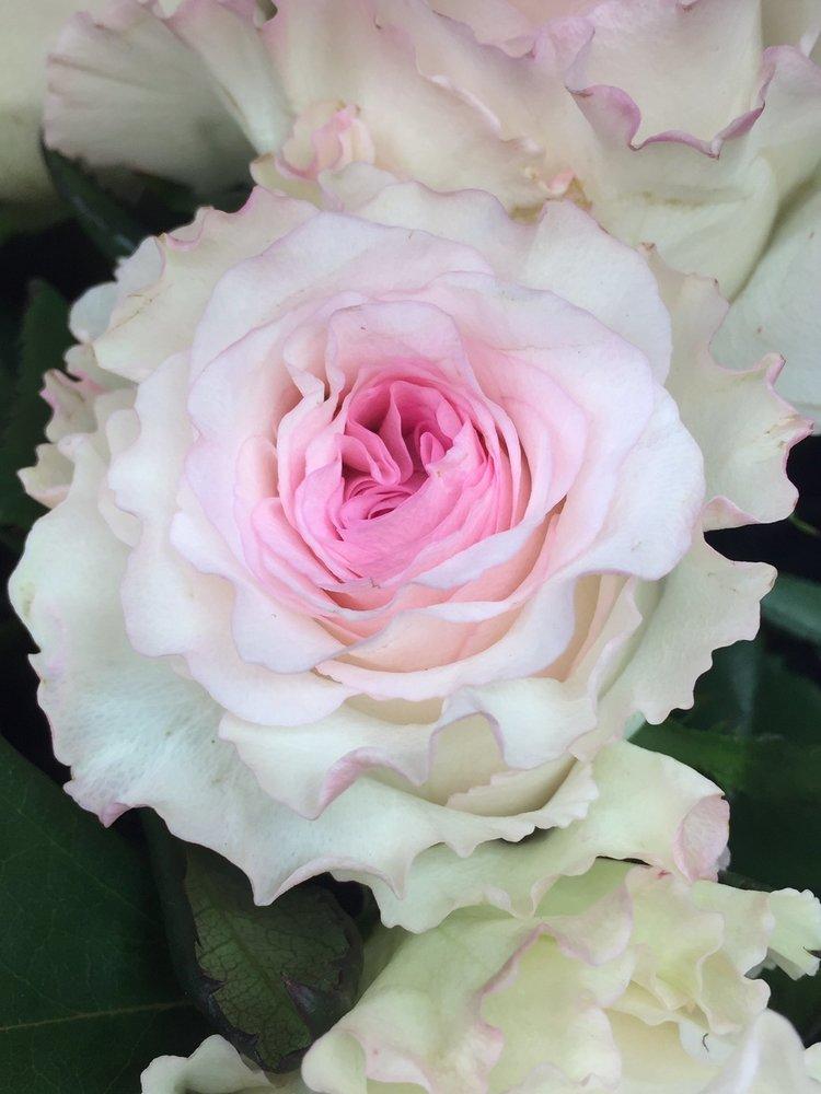 花屋 祐天寺 【保存版】目黒で花を買うなら絶対ここ!目黒のおしゃれな花屋さん15選|Giftime「ギフタイム」プレゼントに特化したWebメディア
